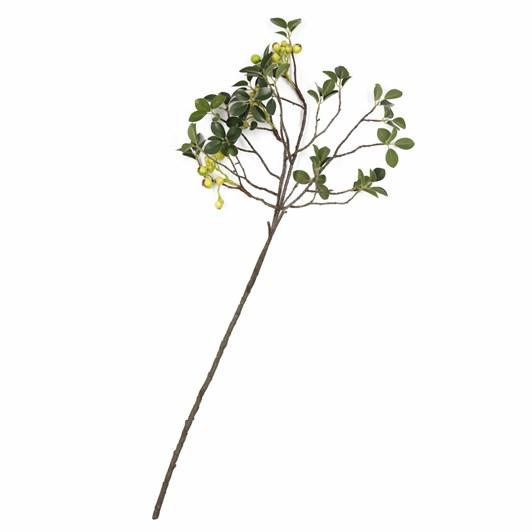 Spring Berry Branch