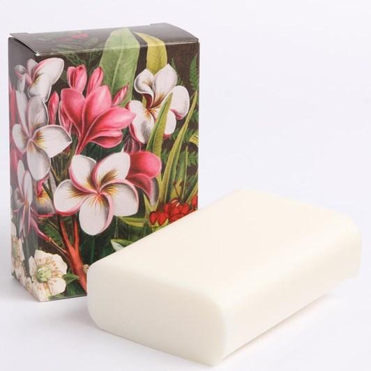 Tanya Wolfkamp Frangipani Boxed Soap