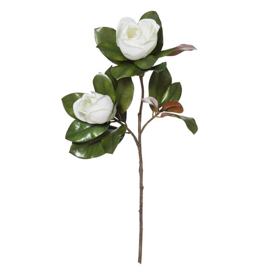 Albi Magnolia Gran Flower W/Bud & Leaves