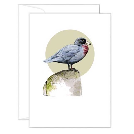 Poppy Card - Whio