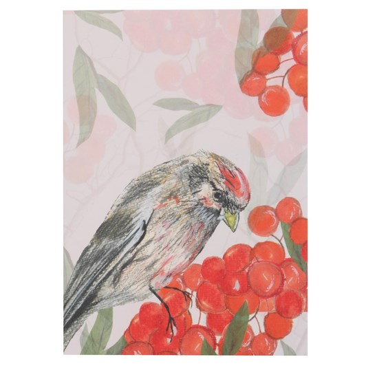 Mills And Plume Pink Red Poll Card