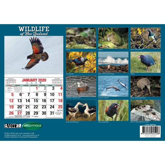 NZ Wildlife Calendar 2020 304x215mm