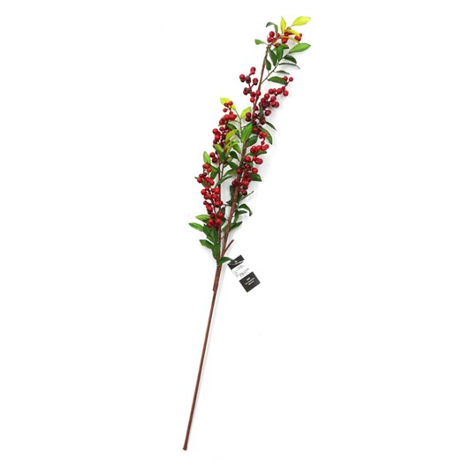Tall Nandina Branch