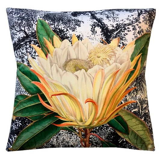Vanilla Fly Cushion Yellow Protea 50X50Cm