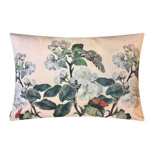 Vanilla Fly Cushion Appleblossom Nude 50X70Cm