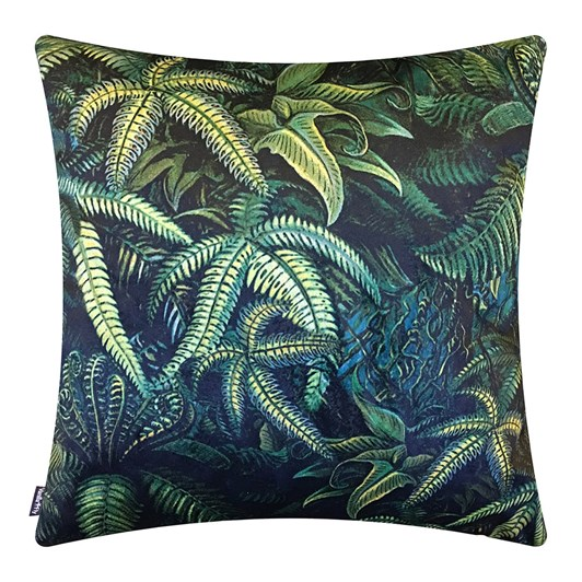 Vanilla Fly Cushion Fern 50X50Cm