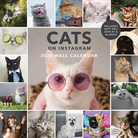 Cats Of Insta Calendar 2020 Calendar