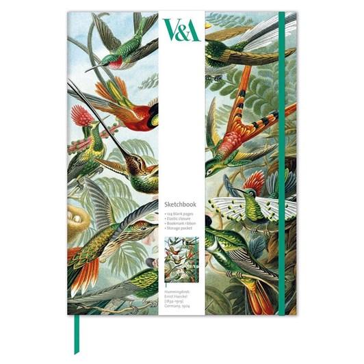 Museums & Galleries Trochilidae Sketchbook