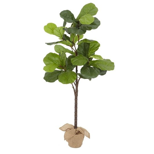 Pottery Barn Potted Fiddleleaf