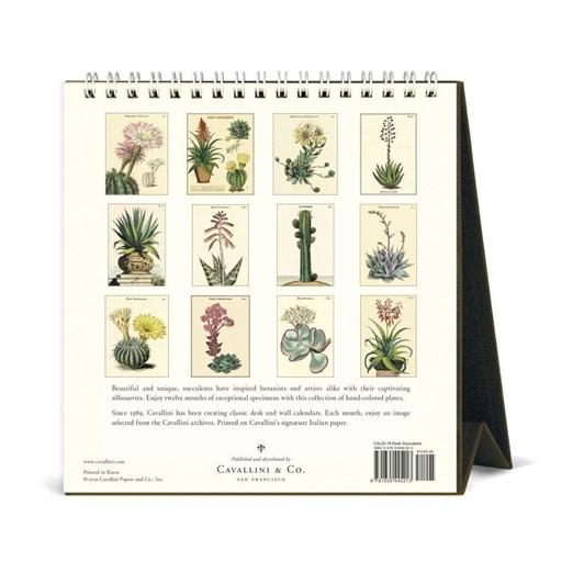 Cavallini Succulents 2020 Desk Calendar