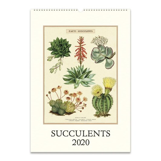 Cavallini Succulents 2020 Wall Calendar