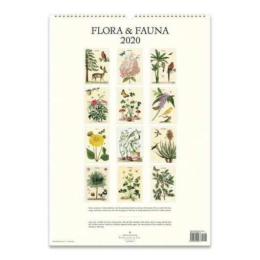 Cavallini Flora & Fauna 2020 Wall Calendar