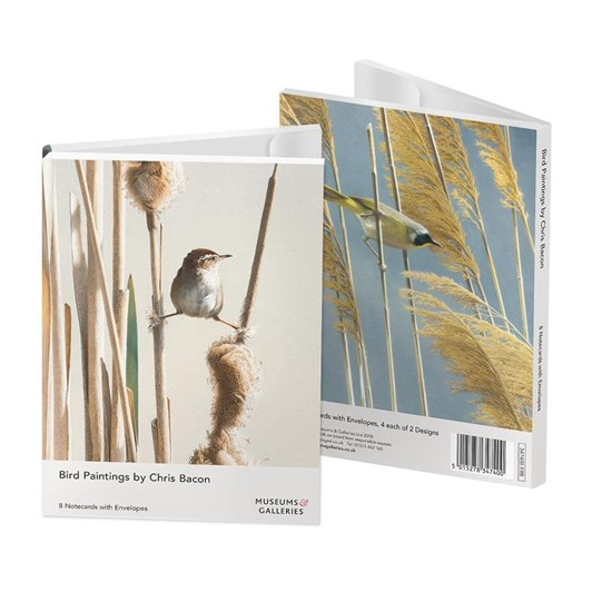 Museums & Galleries Bird Paintings Notecards 4 X 2
