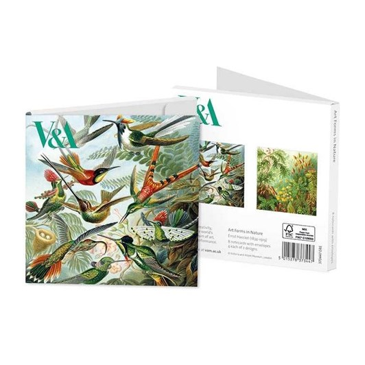 Museums & Galleries Art Forms In Nature Notecard Set 4 X 2