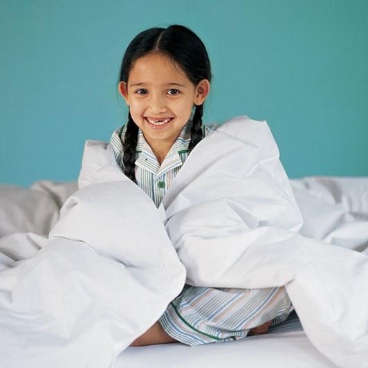 Pottery Barn Kids Gbl Quallowarm Synthetic Comforter