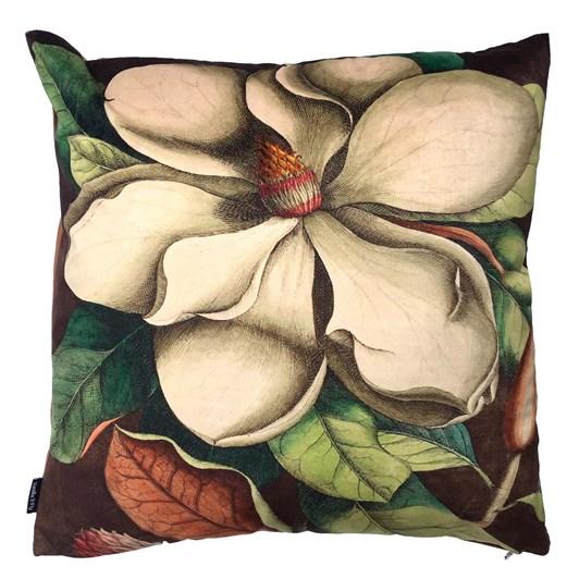 Vanilla Fly Cushion White Magnolia 50X50