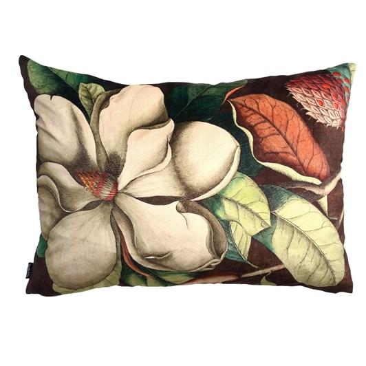 Vanilla Fly Cushion Big White Magnolia 50X70