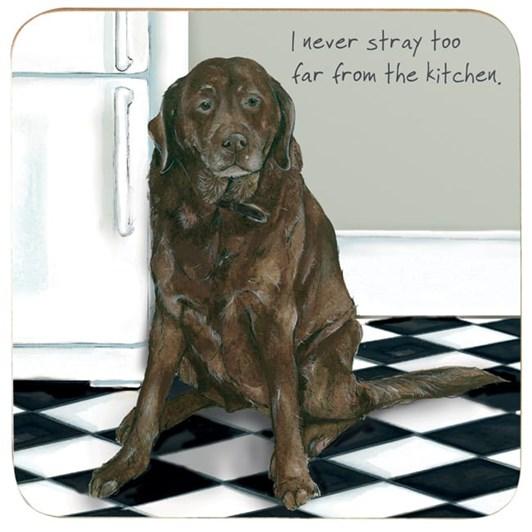 Little Dog Laughed Fridge Stray Coaster