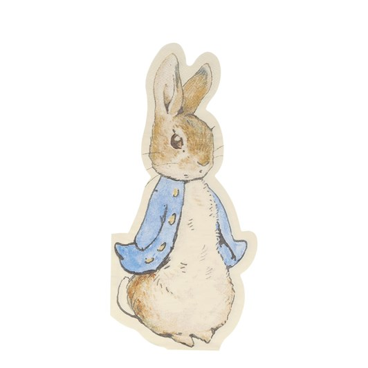 Peter Rabbit Napkin