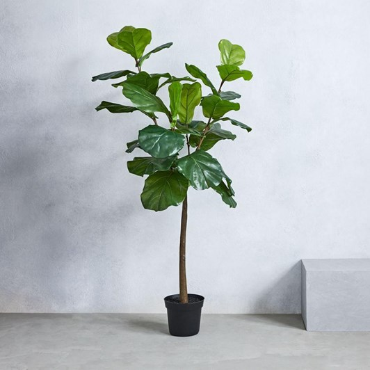 West Elm Fiddle Leaf Tree