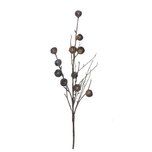 Gumnut Twig