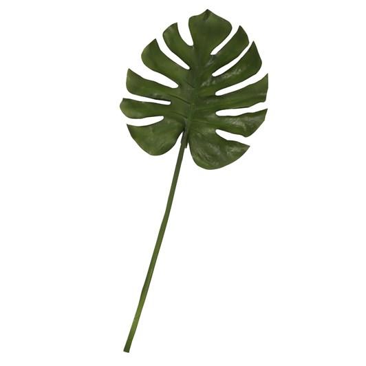 Fresh Monstera Leaf XL