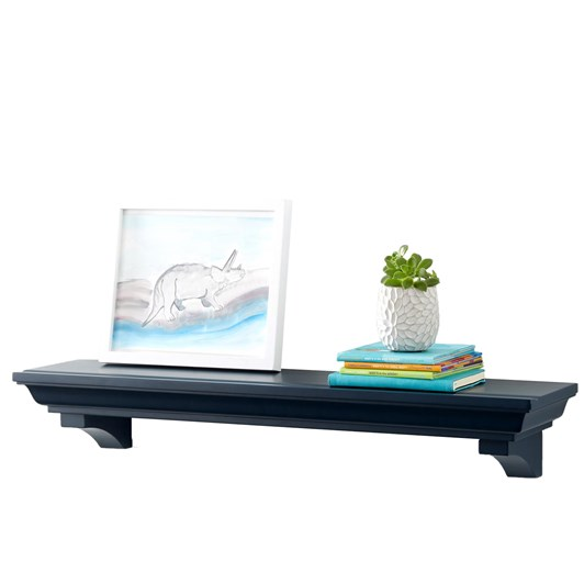 Pottery Barn Kids Classic Shelf 3Ft Shelf