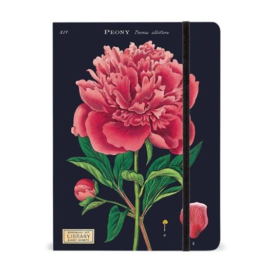 Cavallini Botany Large Journal