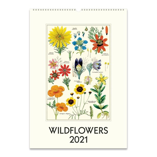Cavallini Wildflowers Wall Calendar