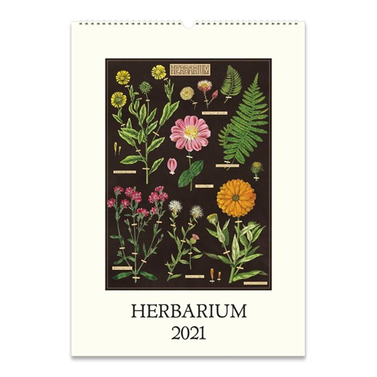 Cavallini Herbarium Wall Calendar