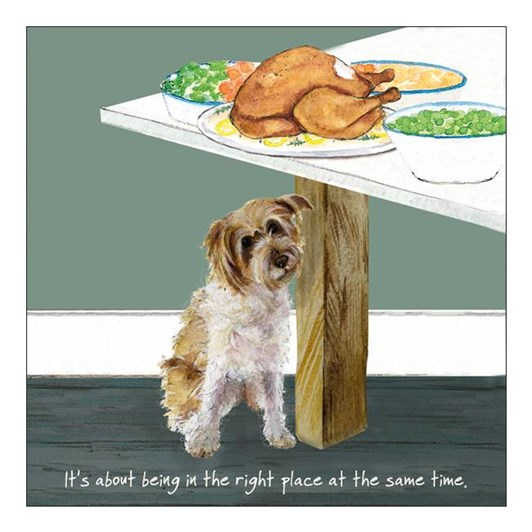 Little Dog Laughed Right Place Card