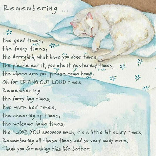 Little Dog Laughed Remember Cat