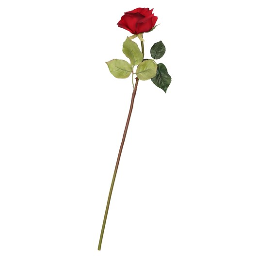Tall Romance Rose Red