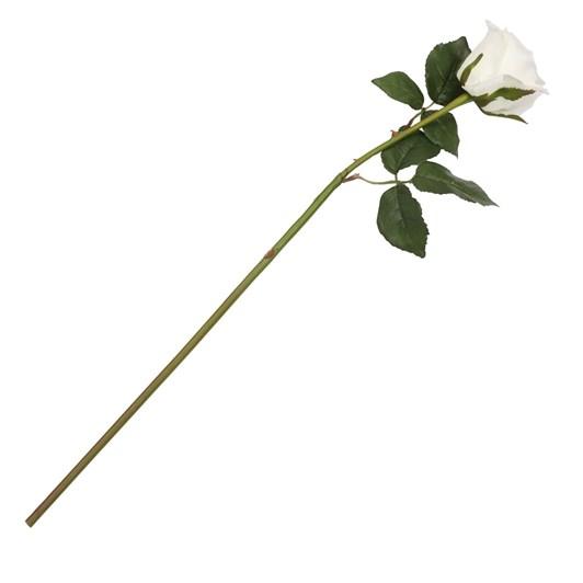Tall Romance Rose White