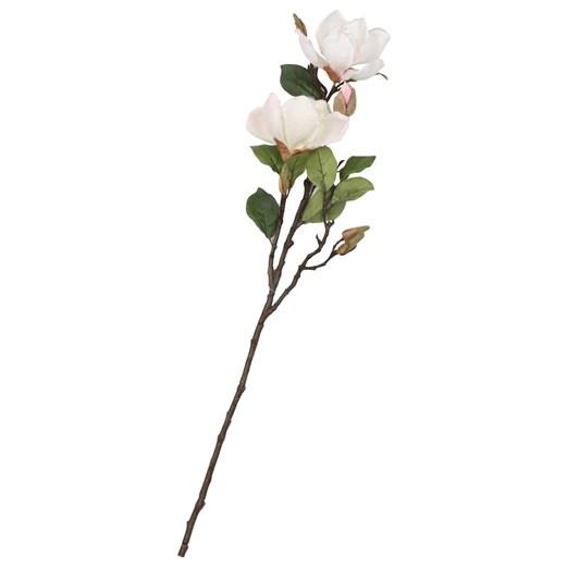 Spring Magnolia Spray Cream Pink