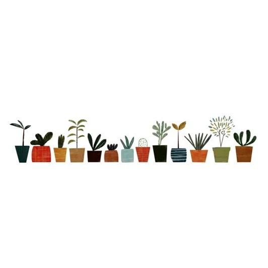 U Studio Pot Plants In A Row