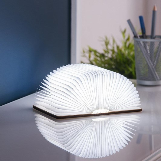 Gingko Mini Smart Book Light Natural Wood