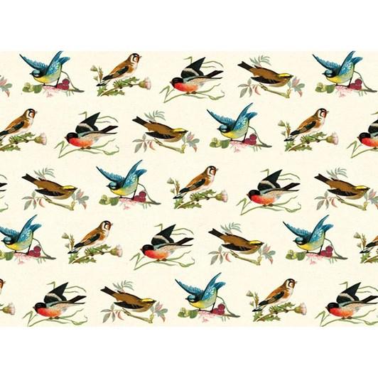 Museums & Galleries Wrap  Birds