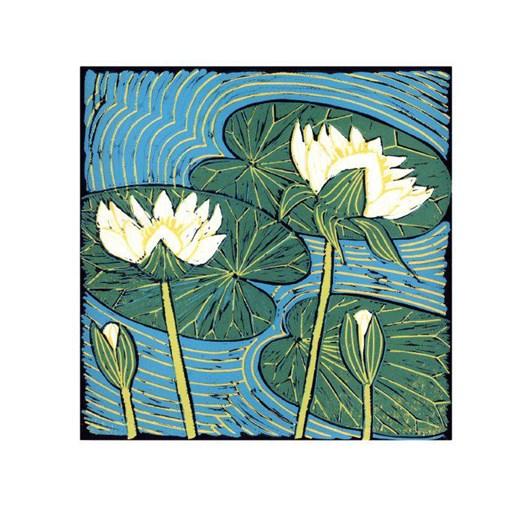 Museums & Galleries Waterlilies
