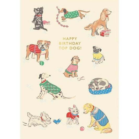 Happy Birthday Top Dog Foil Card