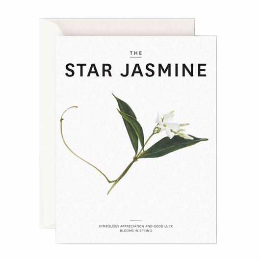 Father Rabbit Stationery The Star Jasmine Card