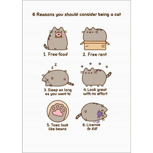 Reasons To Be A Cat Card