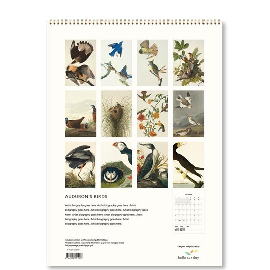 Hello Sunday Audubon's Birds Medium Calendar