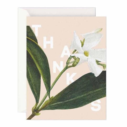 Father Rabbit Stationery Jasmine Thanks Card