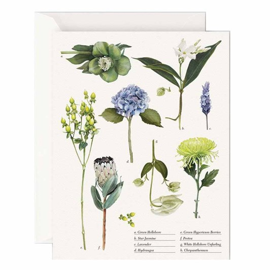 Father Rabbit Stationery Botanical Collection Card