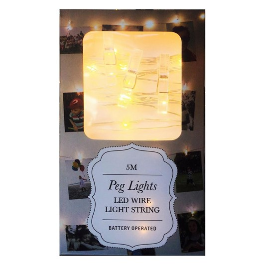 Stellar Haus 50 LED Peg AA Seed Light String Copper 5m