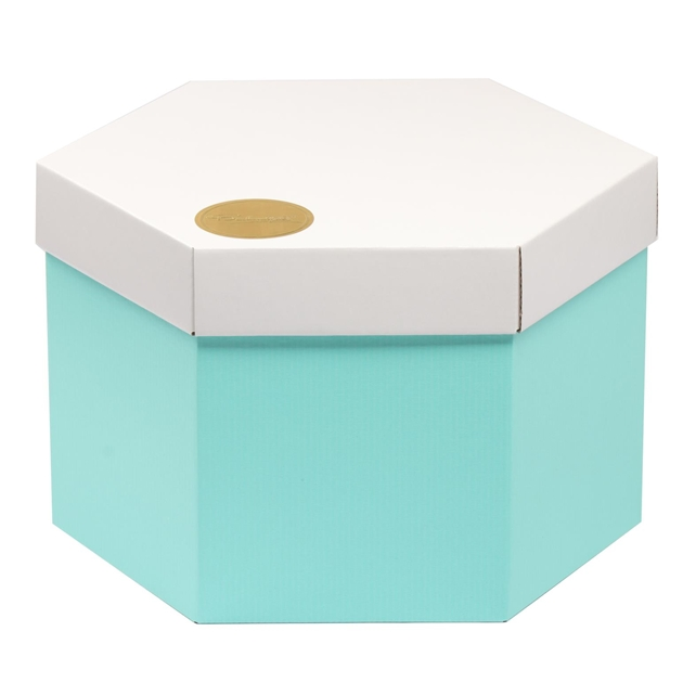 Hexagonal Box & Lid Set 300 hexx x 220 high - White -
