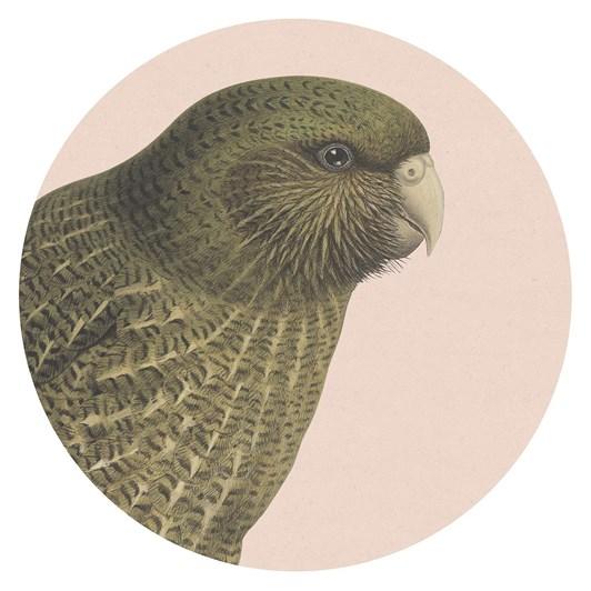 Hushed Kakapo Blush Placemat