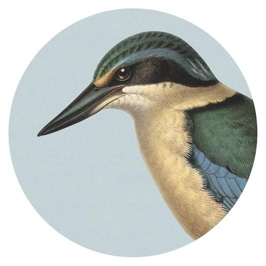 Hushed Kingfisher Blue Coaster