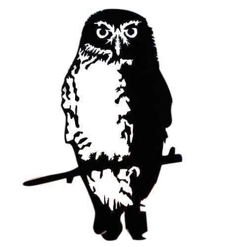 Metalbird NZ Ruru/Morepork